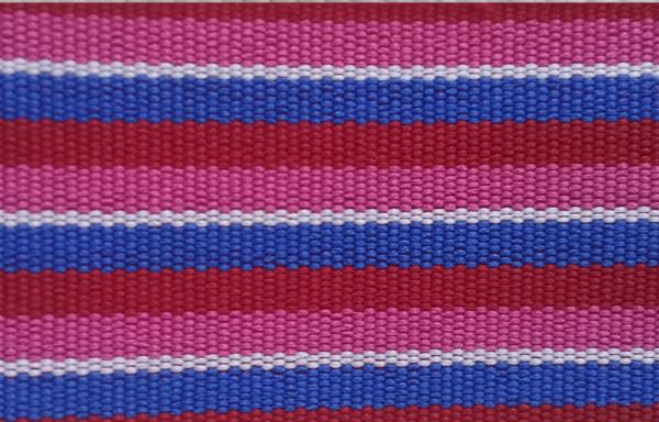 Cintas Multicolor – RCP-006